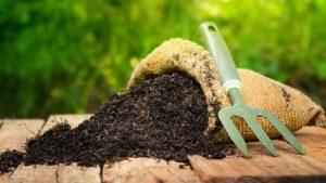 Jenis-jenis Pupuk Kompos yang Ampuh untuk Menyuburkan Tanaman